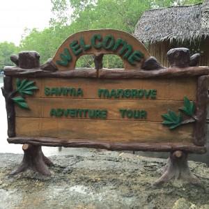 Bohol Mangrove
