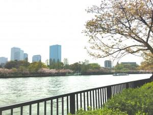 Yodagawa river park
