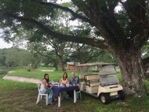 Breakfast under a tree