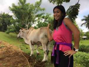 Paradizoo 5 legged cow Tagaytay