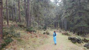 gangtey-trail-5
