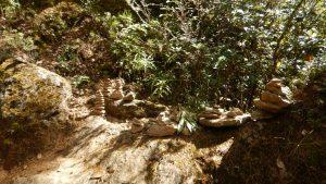 tigers-nest-8